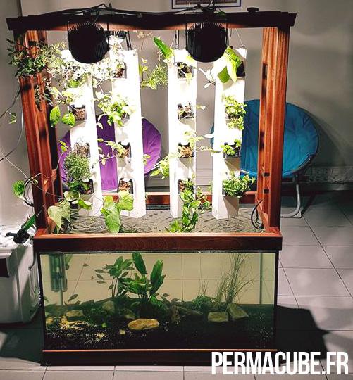 J'aime l'aquaponie Permacube-v4
